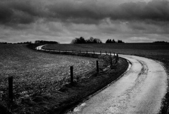 The Land: #4 (Le Dernier Patard - 2015)
