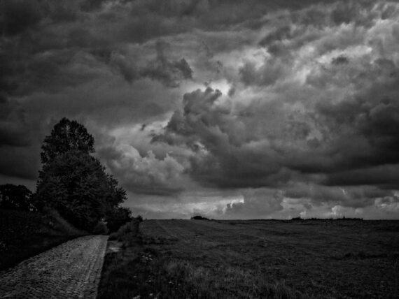 The Land: #5 (Chemin du Crucifix - 2015)